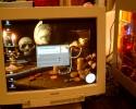 2006-01-04-Clubdag-de-Kuil-HKCC-0031